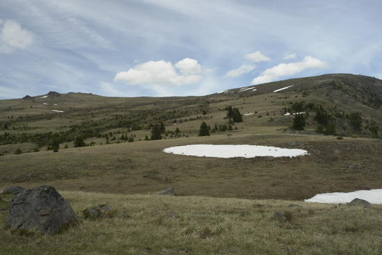 Horseshoe Basin near Sunny Pass