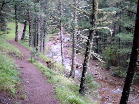The South Fork Trail