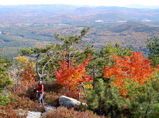 Looking south from S. Moat Mtn., White Mtns, New Hampshire