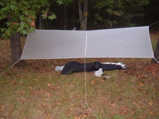 Under one of my tarps