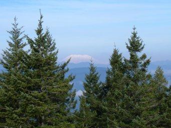 Mt. St. Helens.