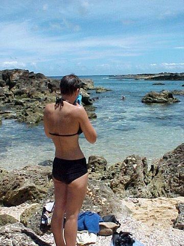 Kauai snorkle, kayak-rental beach area