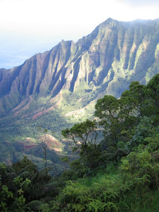 Typical hiking terrain