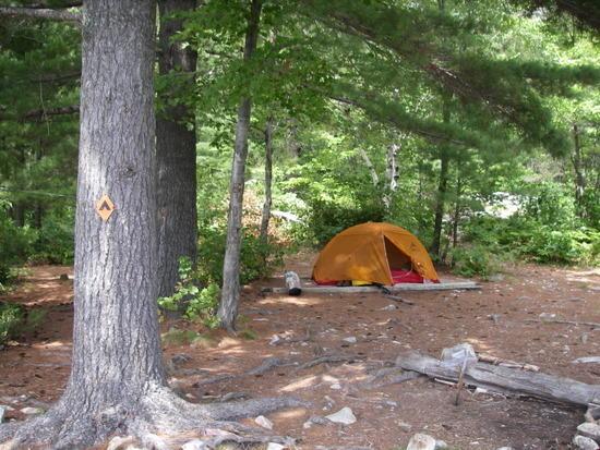 Nellie Lake campsite