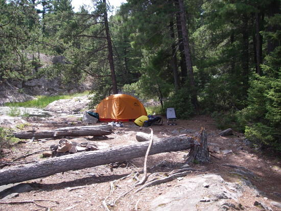 Threenarrrows site, a big storm blew through the area a month prior. Downed tree every where.