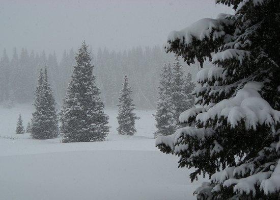 Snowy Range, WY 2007