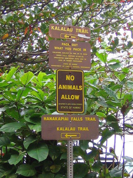 Kahalau Trail