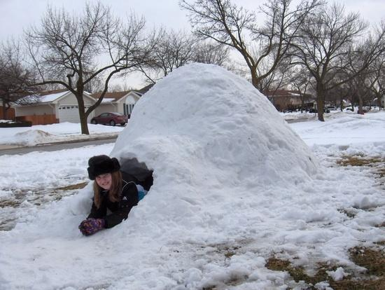 7-Foot Igloo