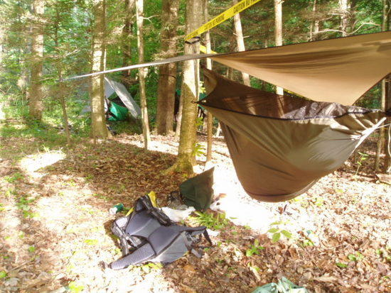 There's subculture of hammock hangers hiding in the trees.  More hammocks than tarps.