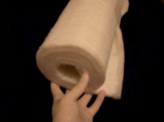 poor photo of roll