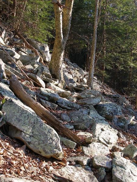 rocks'