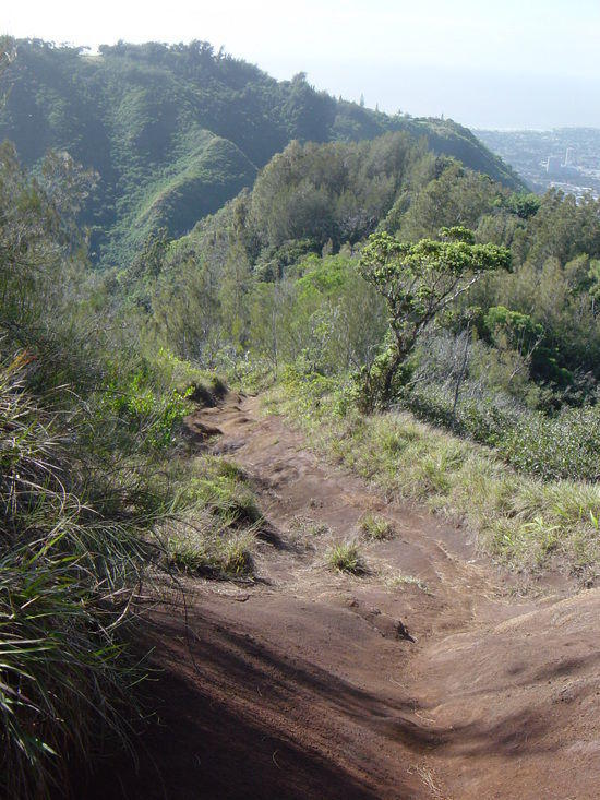 Potential mudslide on Mau'mae ridge trail.  Photo credit E. Mathis.