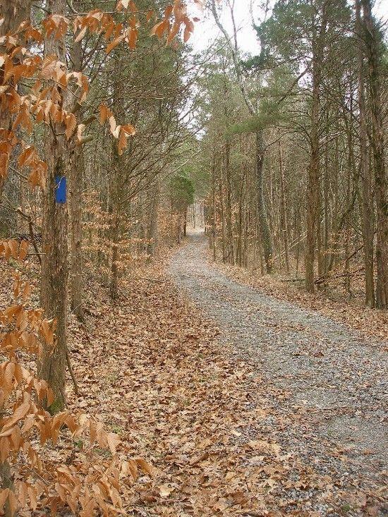 cr trail