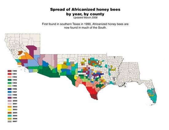 USDA ARS Tucson africanized bee map