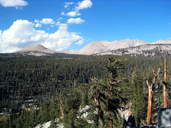 Tawny Point & Bighorn Plateau