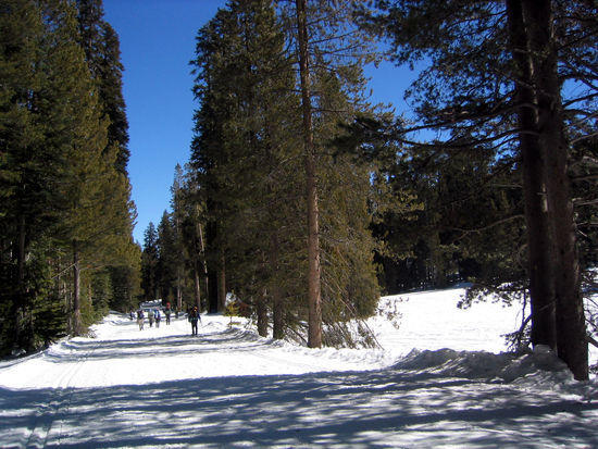 Groomed Trail to Picnic Area