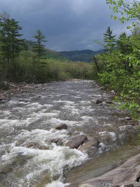 Swift River, WMNF, NH
