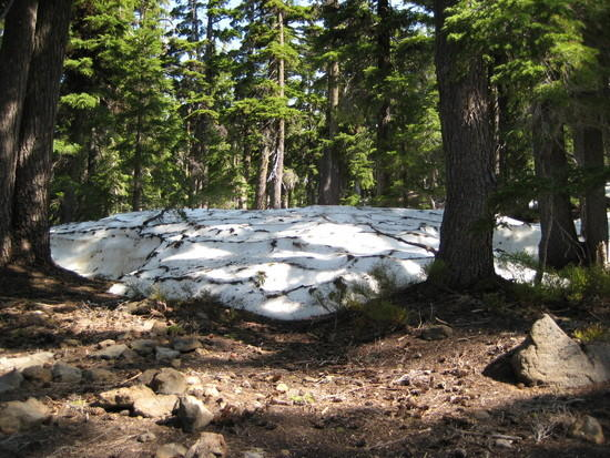First snow encountered at 5,000' elev.