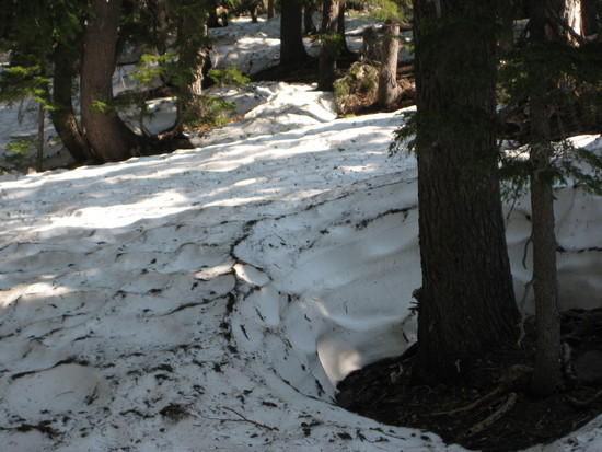 Snow continued to get deeper with fewer bare spots at higher elevations .