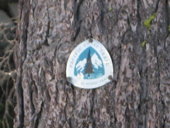 Trail marker at Devils Peak south of Crater Lake.