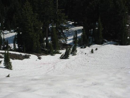 Snow below Devils Peak.