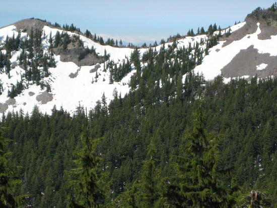 PCT covered in snow.