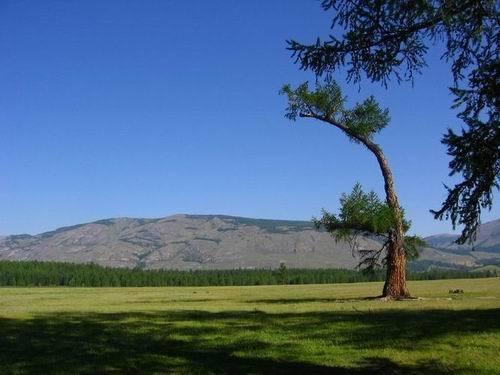 Tuvinain landscape