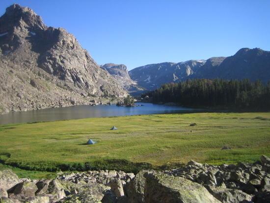 (alpine meadow supreme!)