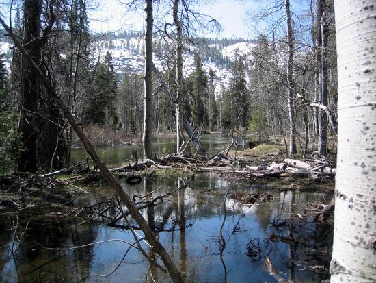 187 Falls Creek