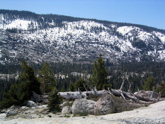 197 Snow Dusted Granite