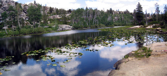 Unnamed Lake Near Piute Meadow