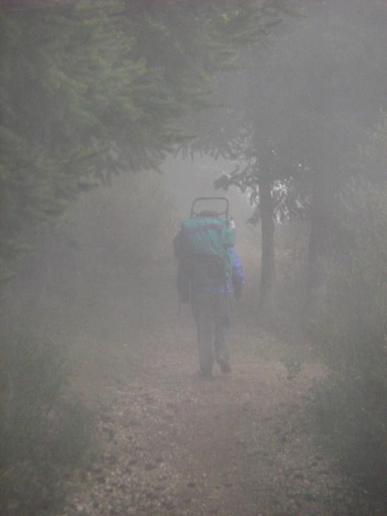 Walking out in the fog