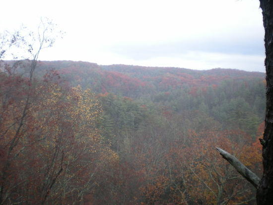 Red River Gorge Amazing
