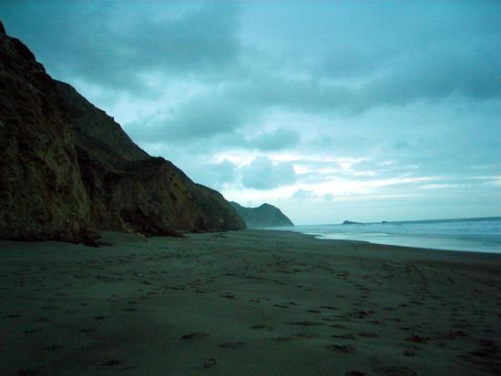 Wild Cat Beach