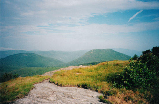 view from Black Balsam Knob, Shining Rock Wilderness, NC