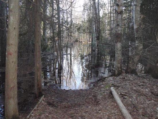 Trail Washout