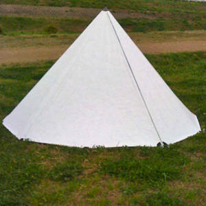 tyvek mono-pole tent project