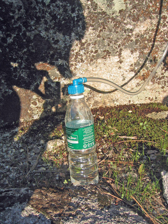 Filling Disposable Water Bottle for Extra Water