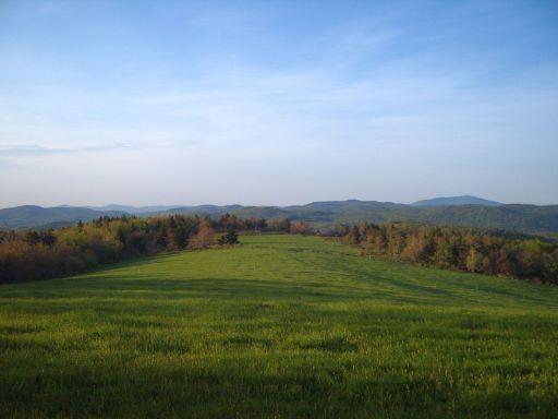 Pitcher Pasture