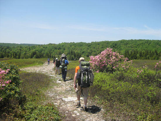 Hiking west into the Dolly Sods on Day 1