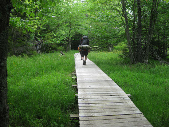 Boardwalk across a bog.  Unfortunately, we had to walk through the muck at many points on the trail