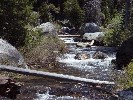 bell creek