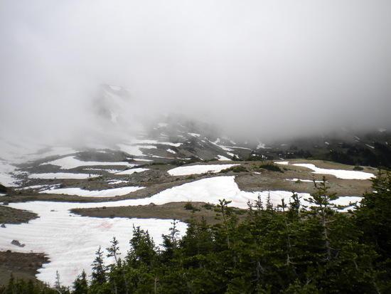 Wonderland and Northern Loop Trail Junction