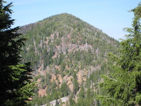 Aspen Butte