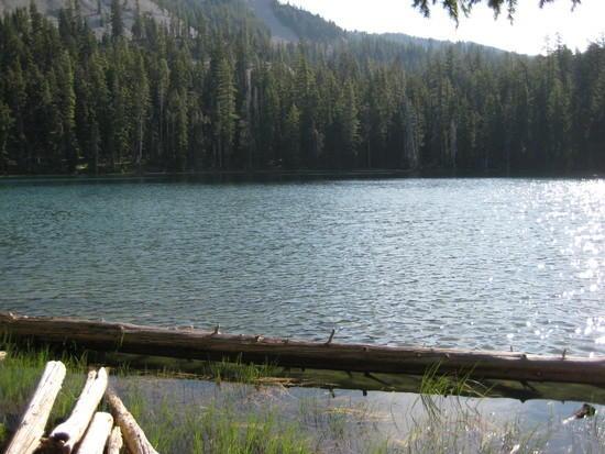 Lake Como - waters edge
