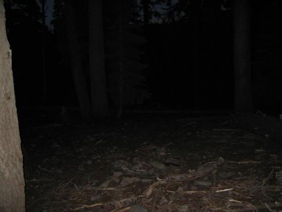 The dark trail.