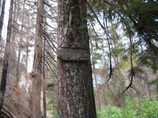Burned Trail Sign