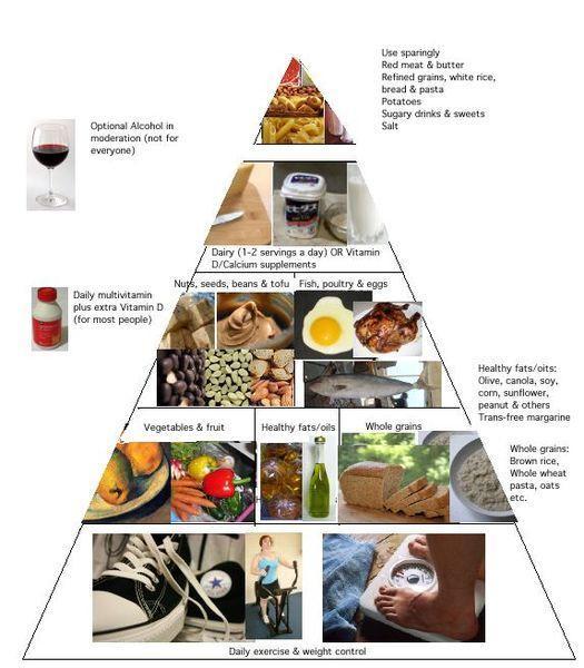 essay of food pyramid