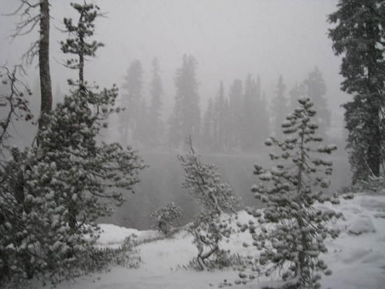 Gem snow