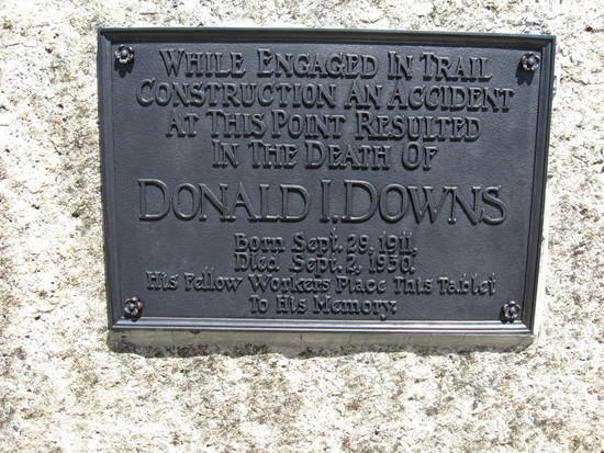 In Memory of Donald I. Downs